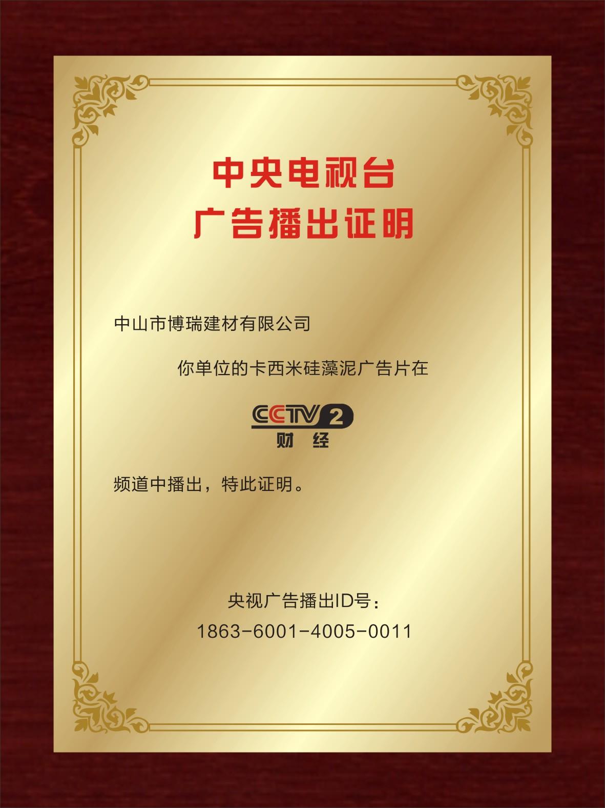 中央电视台年度广告合作证书